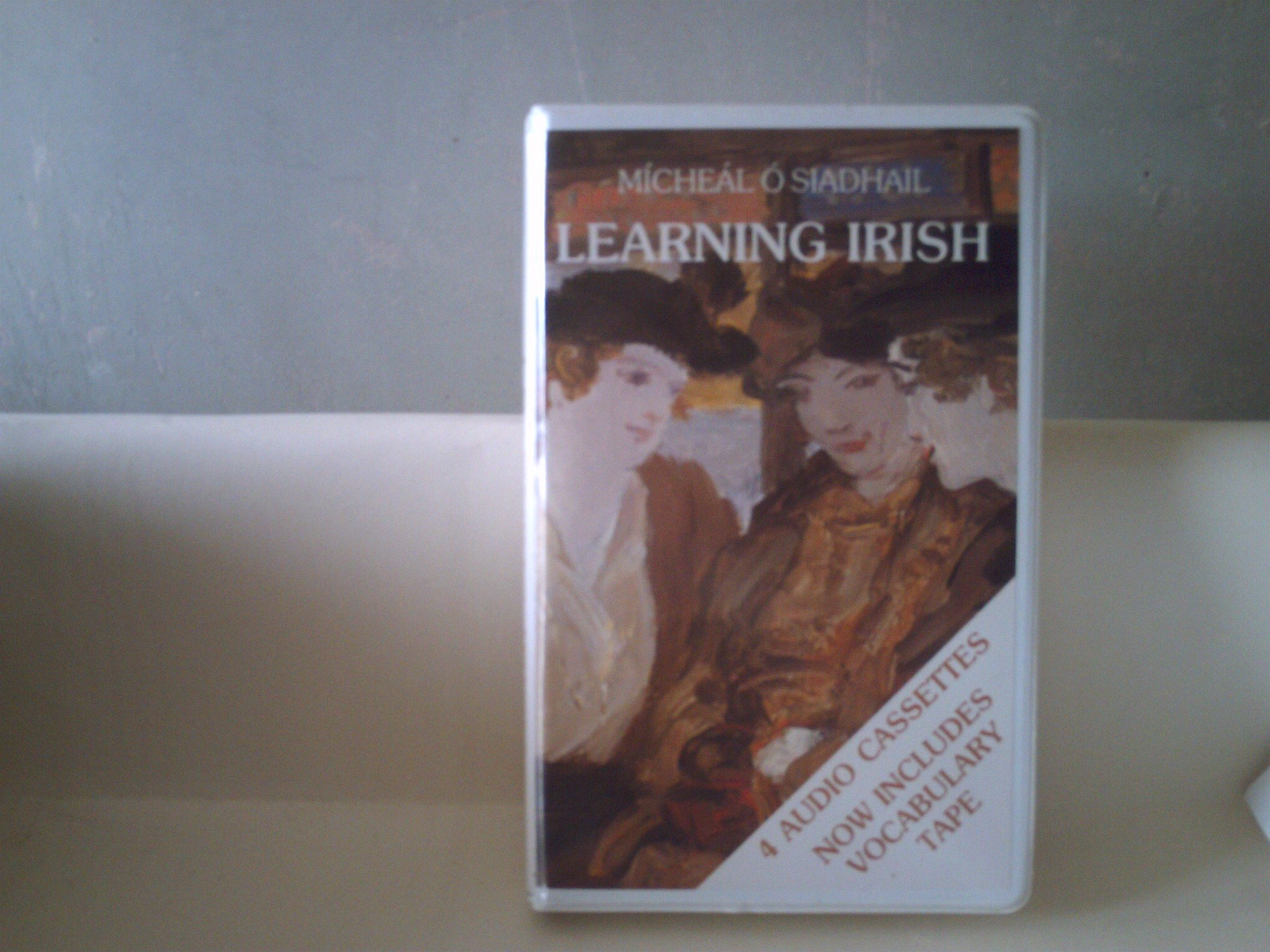 Learning Irish