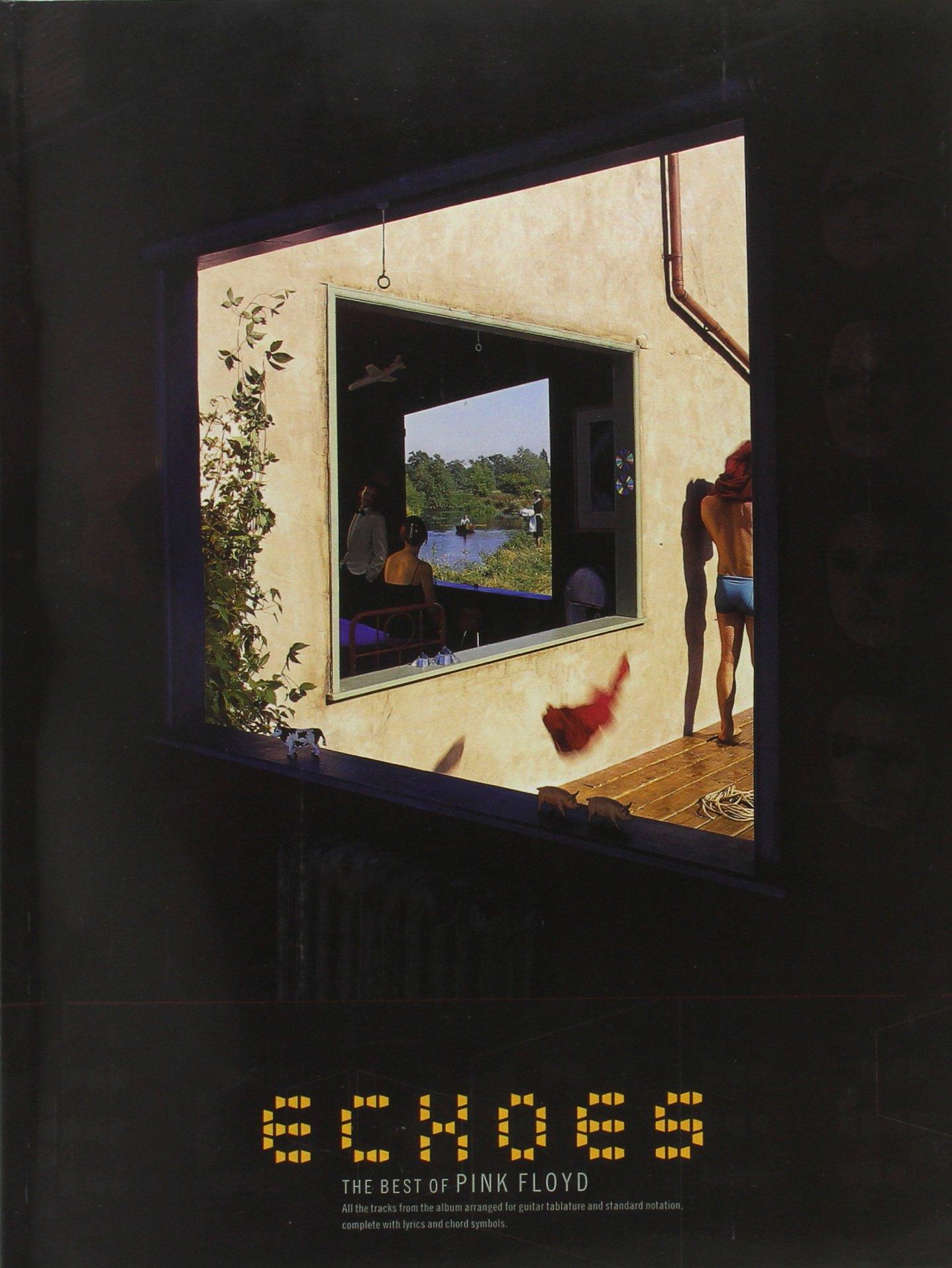 Download Pink Floyd: Echoes pdf epub