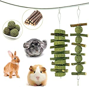 Petawi Bunny Toys Supplies Rabbit Chinchilla Treats and Chews Toys for Teeth Natural Organic Apple Wood Chew Sticks Pet Supplies for Chinchilla Dwarf Rabbit Guinea Pig Rat Hamster Squirrel