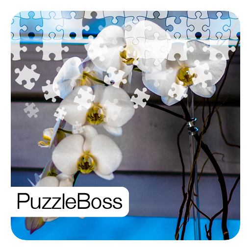 (Orchid Flower Jigsaw Puzzles)