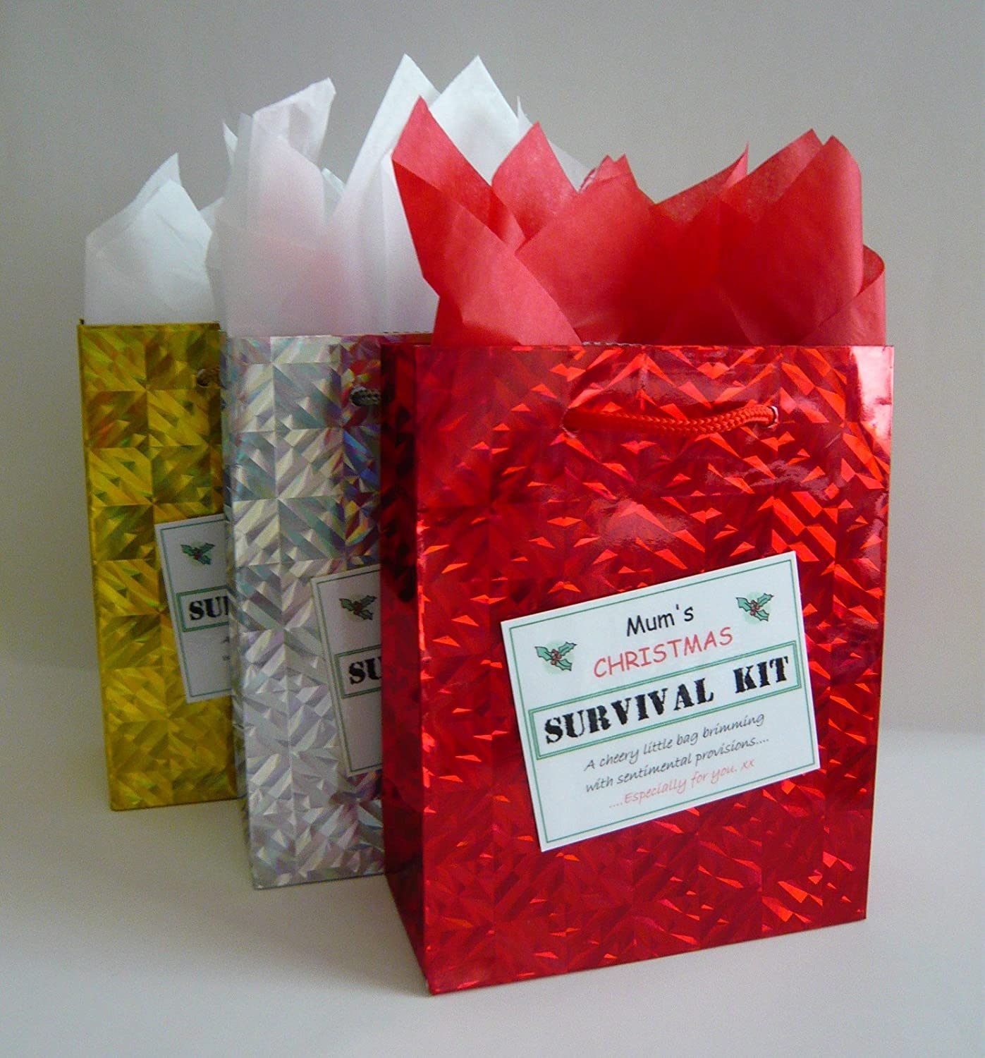 Jemsideas Christmas Survival Kit In A Can Novelty Xmas Gift /& Card For A Friend