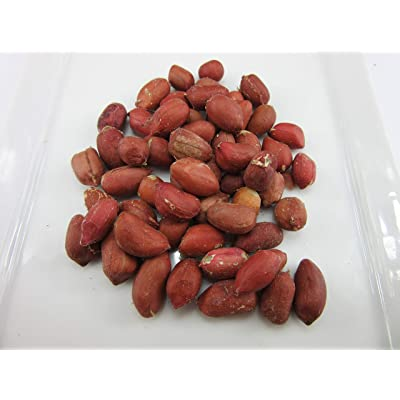 Organic Peanuts (Arachis hypogaea) Seeds by Robsrareandgiantseeds UPC0764425787143 Non-GMO, Organic, USA Grower, Landrace, 1115 Package of 35 Seeds : Garden & Outdoor