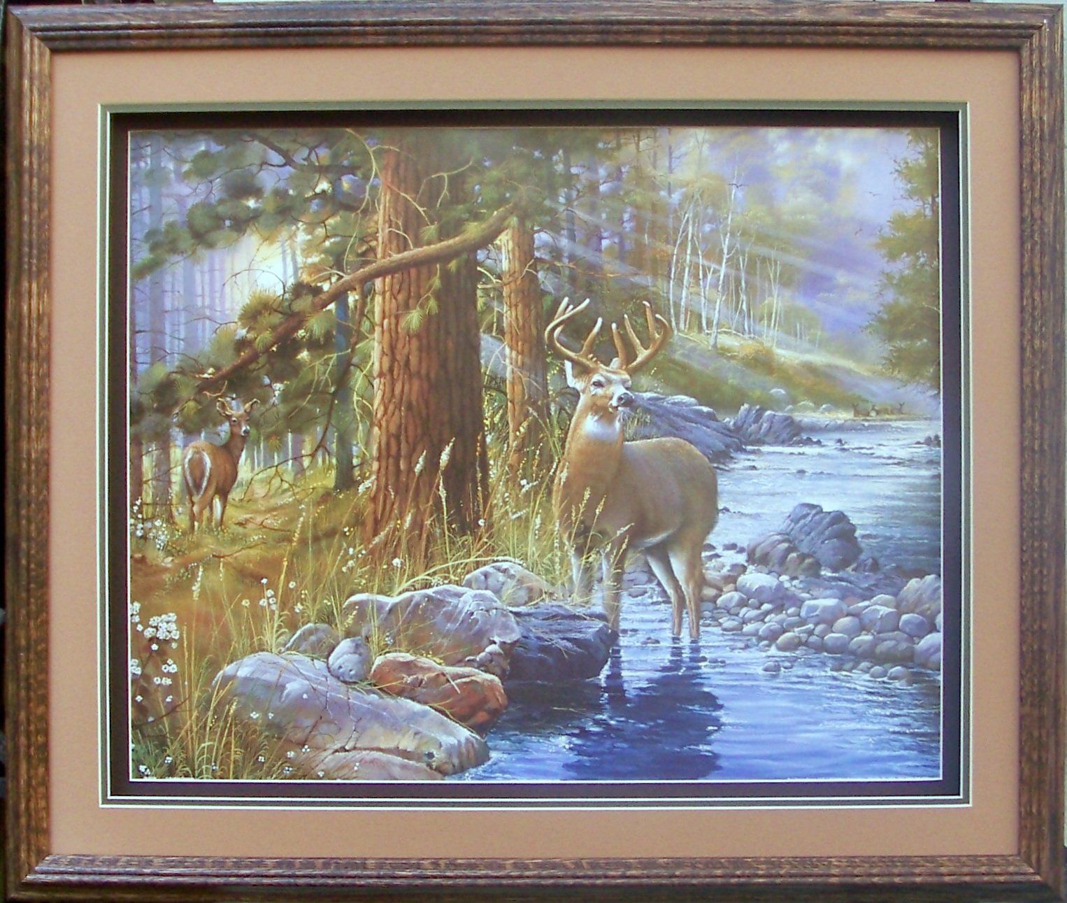 Deer in Woods Paper Tole 3D Decoupage Craft Kit Size 8x10 8-1019