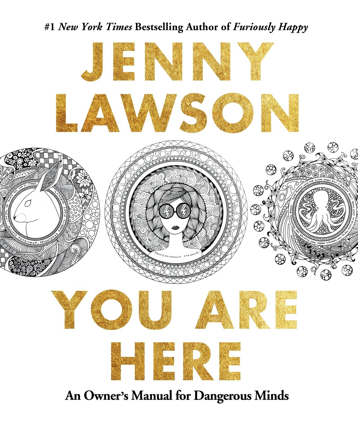 you are here an owner u0027s manual for dangerous minds jenny lawson