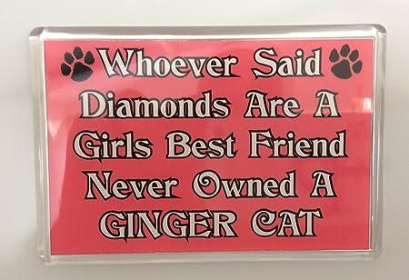 Quién dijo que el mejor amigo de una chica de diamantes ...