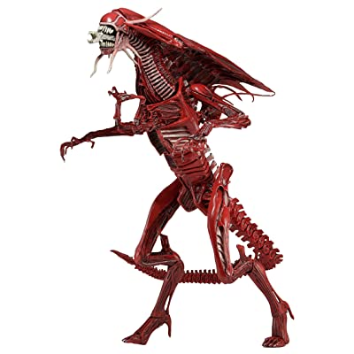 NECA Aliens Ultra Deluxe Boxed Genocide Red Queen Action Figure: Toys & Games