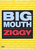 BIG MOUTH [DVD]