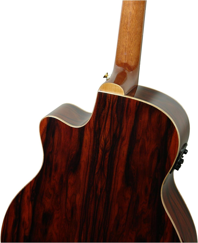 Luna Guitars Vista Eagle - Guitarra electroacústica: Amazon.es ...