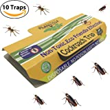 Highly Effective Cockroach Trap Non-Toxic and ECO-Friendly 10 Traps