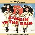 Singin' In The Rain [LP]