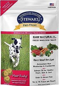 Stewart Pro-Treat Raw Naturals, Freeze Dried Beef Recipe Dog Treats, 4 oz. Resealable Bag