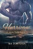 Hurricane (Stormy Weather Book 3)