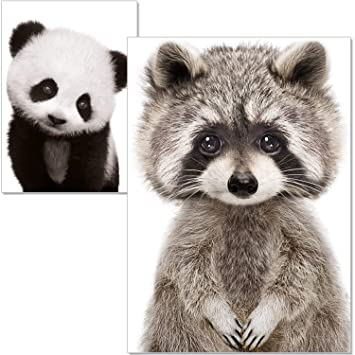 ca1ced7009c440 artpin® Poster Kinderzimmer - A4 Bilder Für Babyzimmer Ohne Rahmen -  Waldtiere Panda Waschbär (