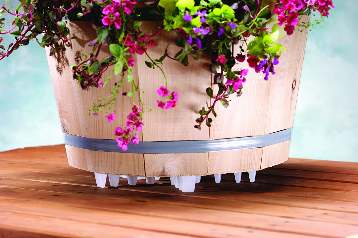 Clear 16-Inch Plant Stand Inc 16440 Down Under
