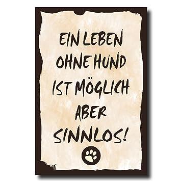 Amazon.de: Holzschild Dekoschild Ein Leben ohne Hund ist ...