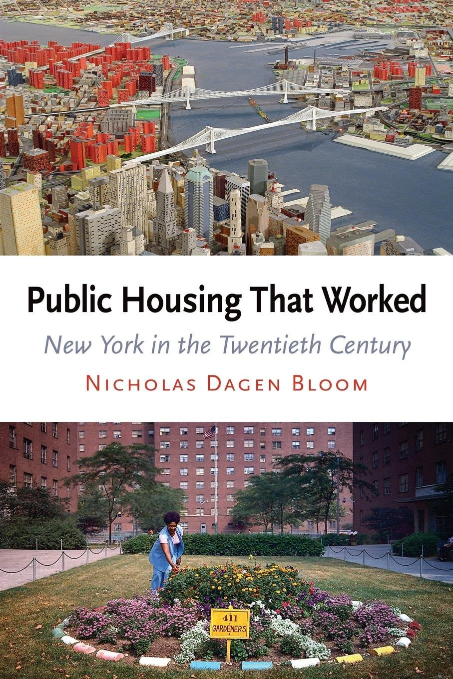 Public Housing That Worked: New York in the Twentieth Century PDF