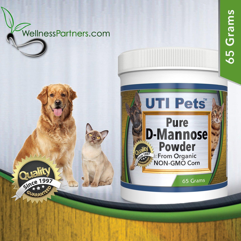 Can Dog Food Cause Uti
