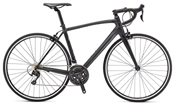 Schwinn Fastback Lightweight Road Bike
