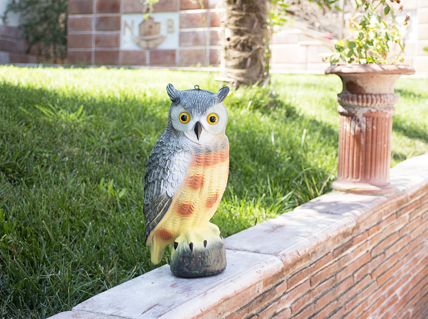 Amazon.com : briteNway Large Scarecrow Owl Decoy Statue By Realistic ...