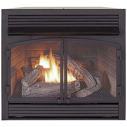 Amazoncom Procom Dual Fuel Fireplace Insert Zero Clearance Home
