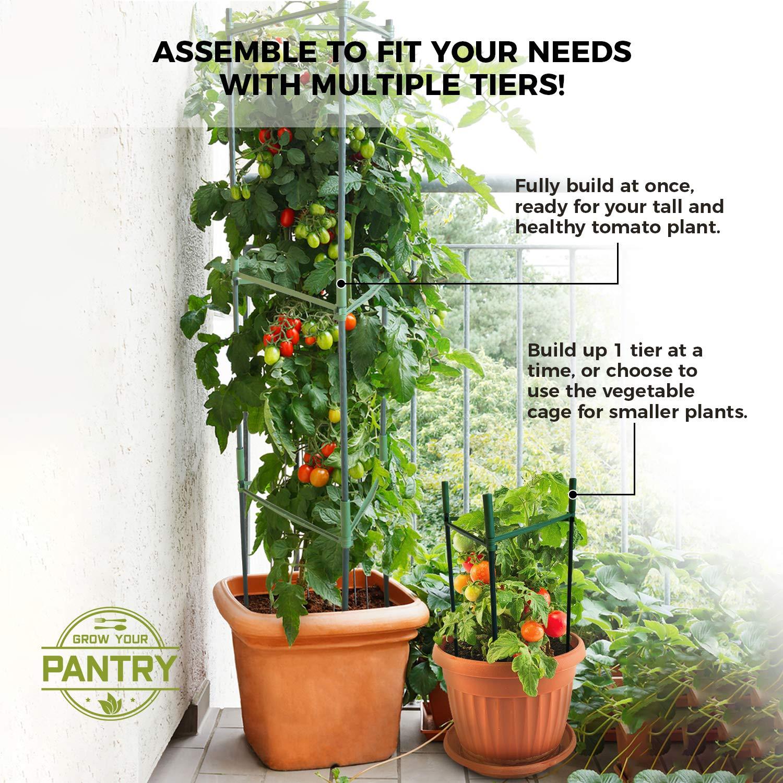 Grow Your Pantry Crece Tus Jaula de Tomate de la despensa de Las ...