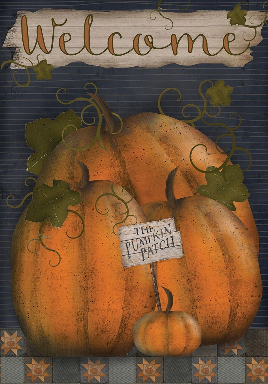 Amazon.com : Pumpkin Patch Welcome Fall Garden Flag Primitive 12.5 ...