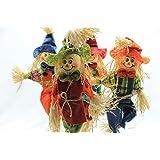 4 Count Smiling Raffia Scarecrows on Stakes