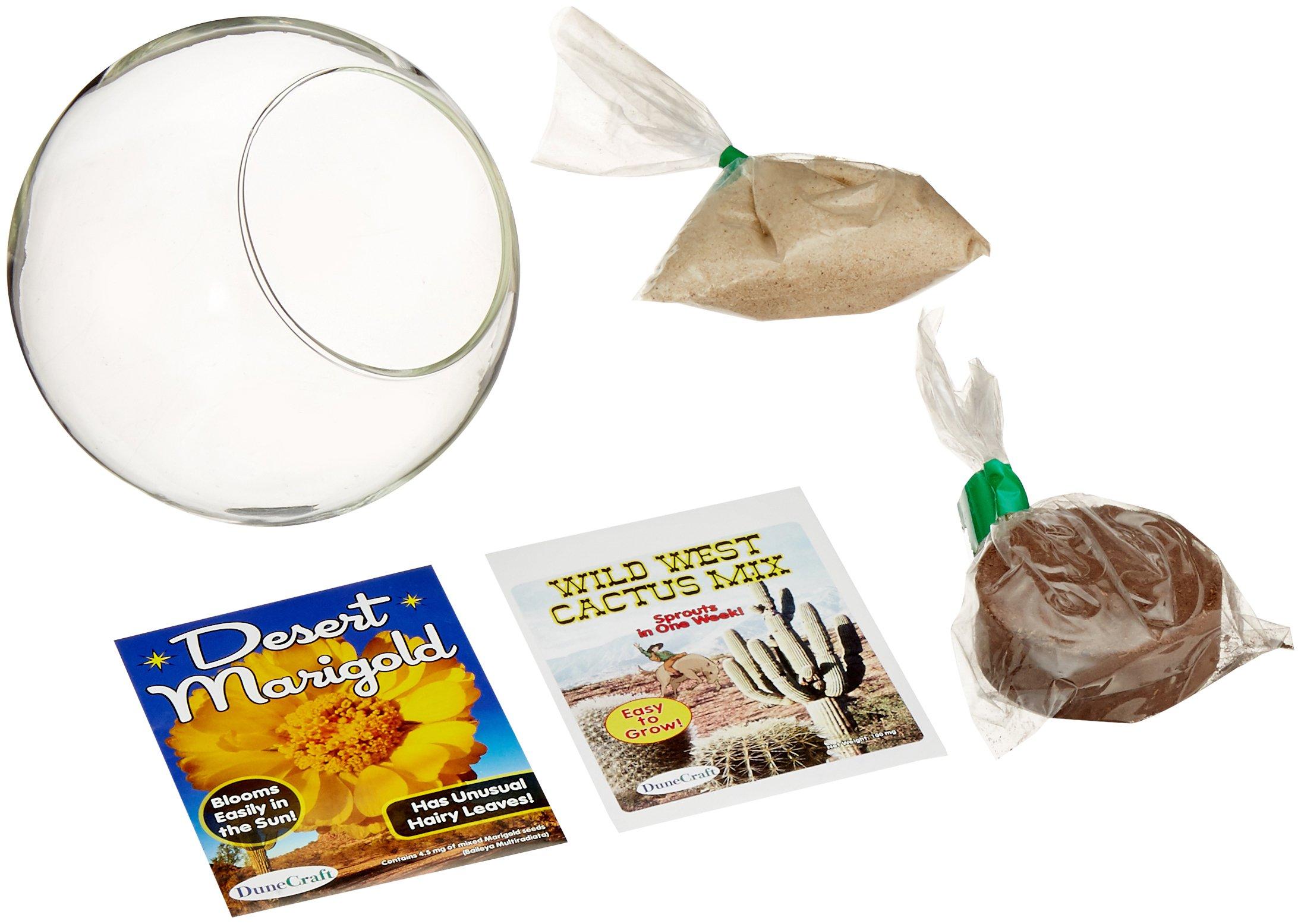 DuneCraft Mini Desertscape Science Kit