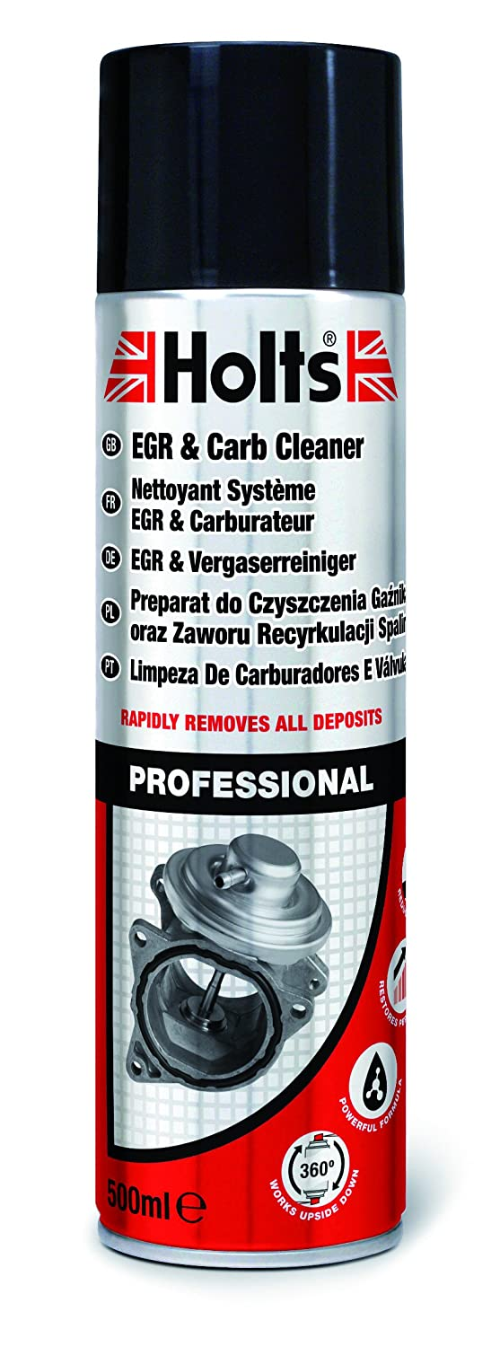 Holts-LOYHMTN0201A Egr e Carb Cleaner, 500 ml, Spray