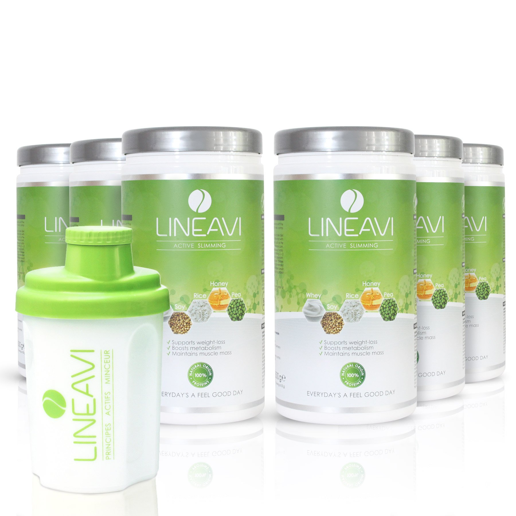 Lineavi Weight Loss Shakes - The Natural Meal Replacement Shakes for Your Diet Plan + Shaker, 6x17.6 oz | Gluten-Free & Lactose-Free | 6 Pack