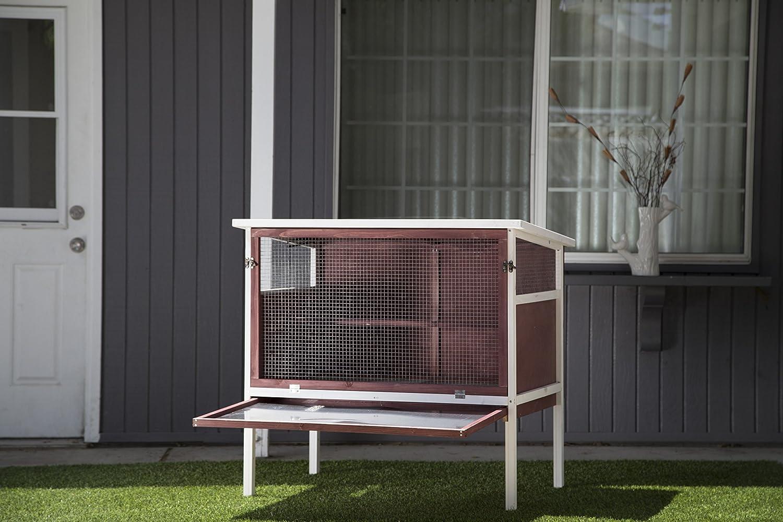 Advantek The Urban Coop Poultry Hutch Compare - Amazon com advantek the urban chicken coop bird houses patio lawn garden
