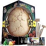 XXTOYS Dino Egg Dig Kit Dinosaur Eggs Jumbo Dino Egg with 12 Different Dinosaur Toys Dino Egg Kit for 5 Kids with 6 Digging T