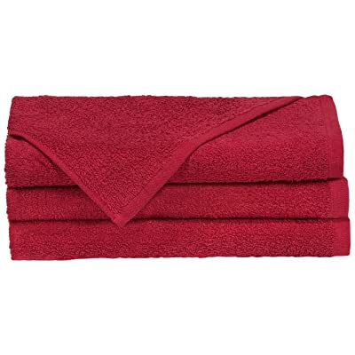 "Towels by Doctor Joe D-16274.5-RI-6EA Think Thick Red 16"" x 27"" Super Absorbent Car Wash and Detailing Towel, (Pack of 6): Automotive"
