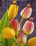 Ceaco Anne Geddes Tulip Baby Jigsaw Puzzle (550-Piece)