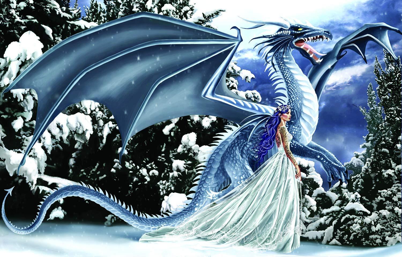 1000 piece dragon puzzle