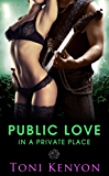 Public Love in a Private Place (Rockstar Romance) (Private Love Book 3) (English Edition)
