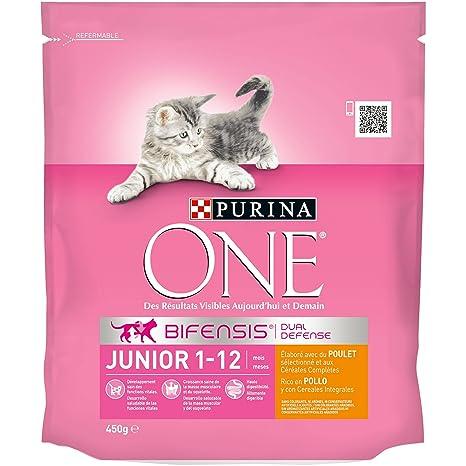 One - Alimento para Gato - Seco - Purina Junior Rico En Pollo Y Con Cereales