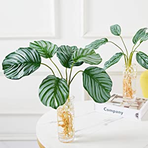 Artificial Tropical Plants with Acrylic Glass Vase Indoor Greenery Palm Leaves with Roots DIY for Home Office Decor (Package 1- 2Pcs (Style A + Style B))