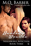 Healing the Wounds (Neighborly Affection Book 3)