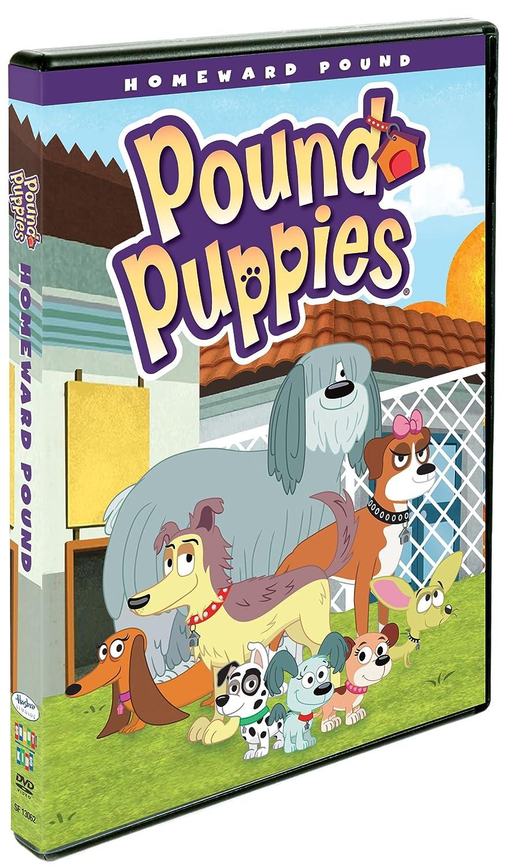 Amazon Pound Puppies Homeward Pound Yvette Nicole Brown