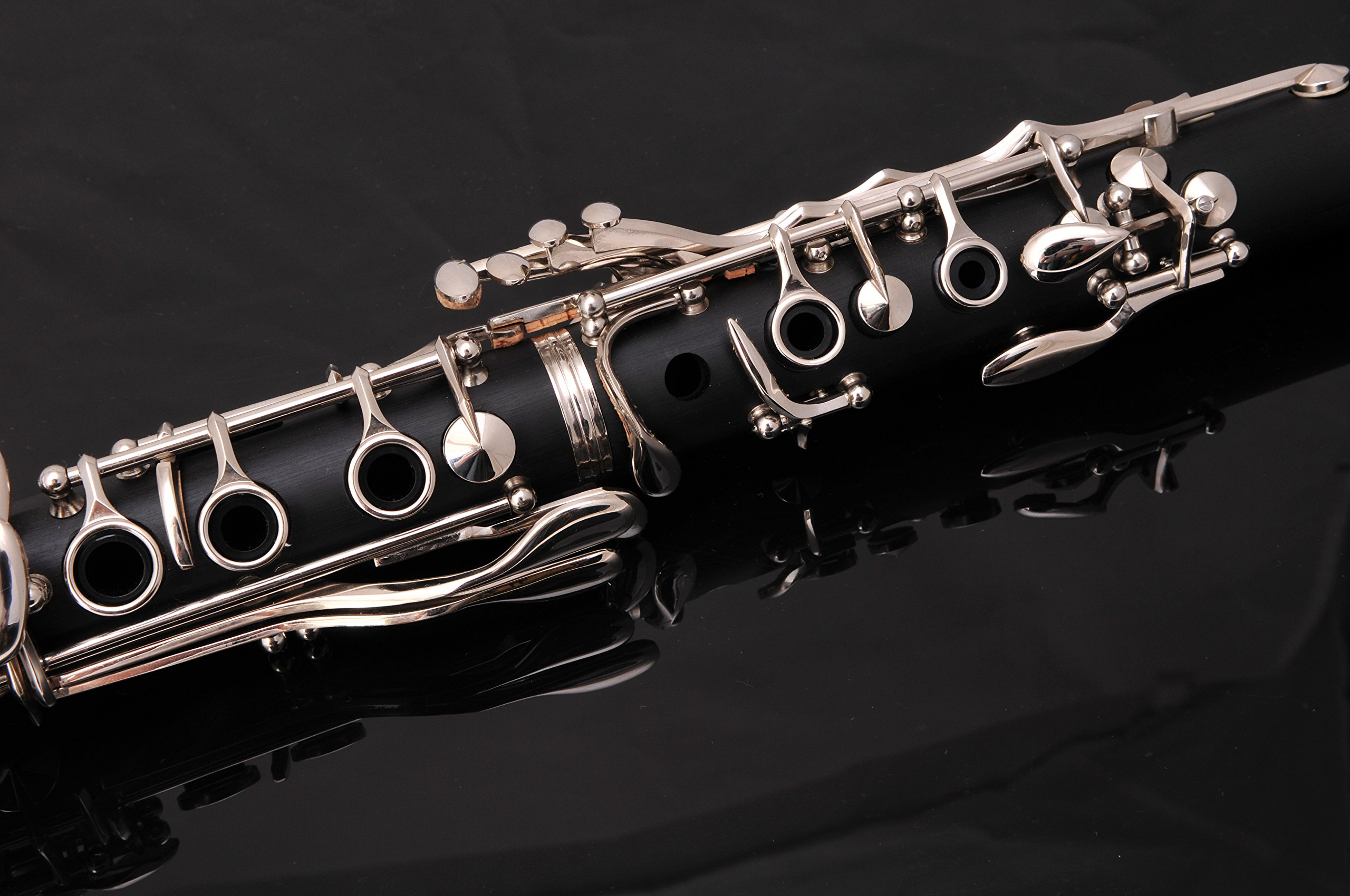 Glory B Flat Black Ebonite Clarinet with 2 Barrels, 11reeds,8 Pads Cushions,case,carekit and More Black/silver Keys by GLORY