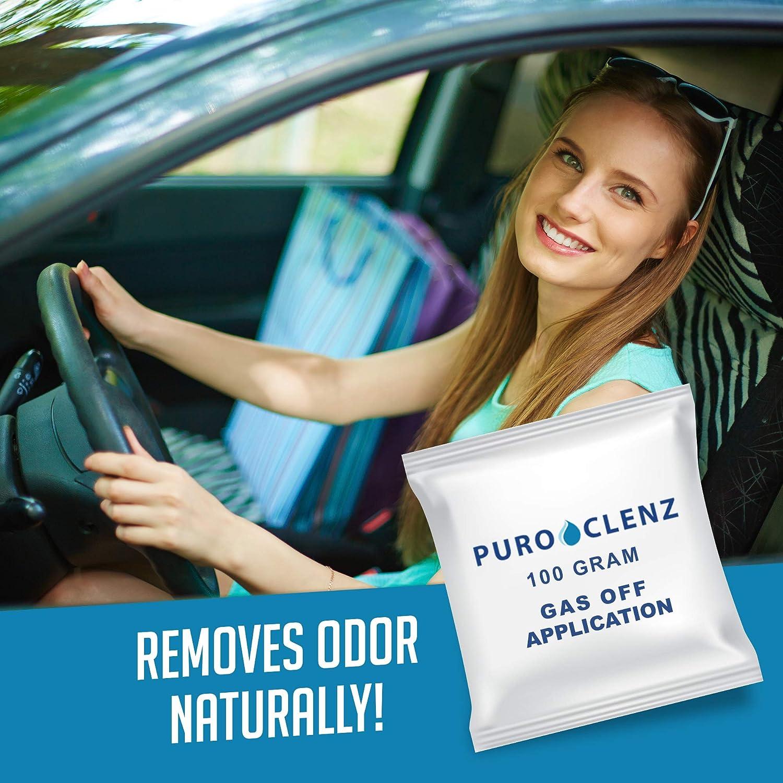 Puroclenz Odor Eliminator Vehicle: Single Treatment