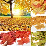 SunAngel Package of Approximately 350 Assorted Rich Fall Colored Silk Maple Leaves for Weddings, Events and Decorating (7Multicolor, 350pcs)