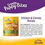 Wellness Crunchy Puppy Bites Natural Grain Free