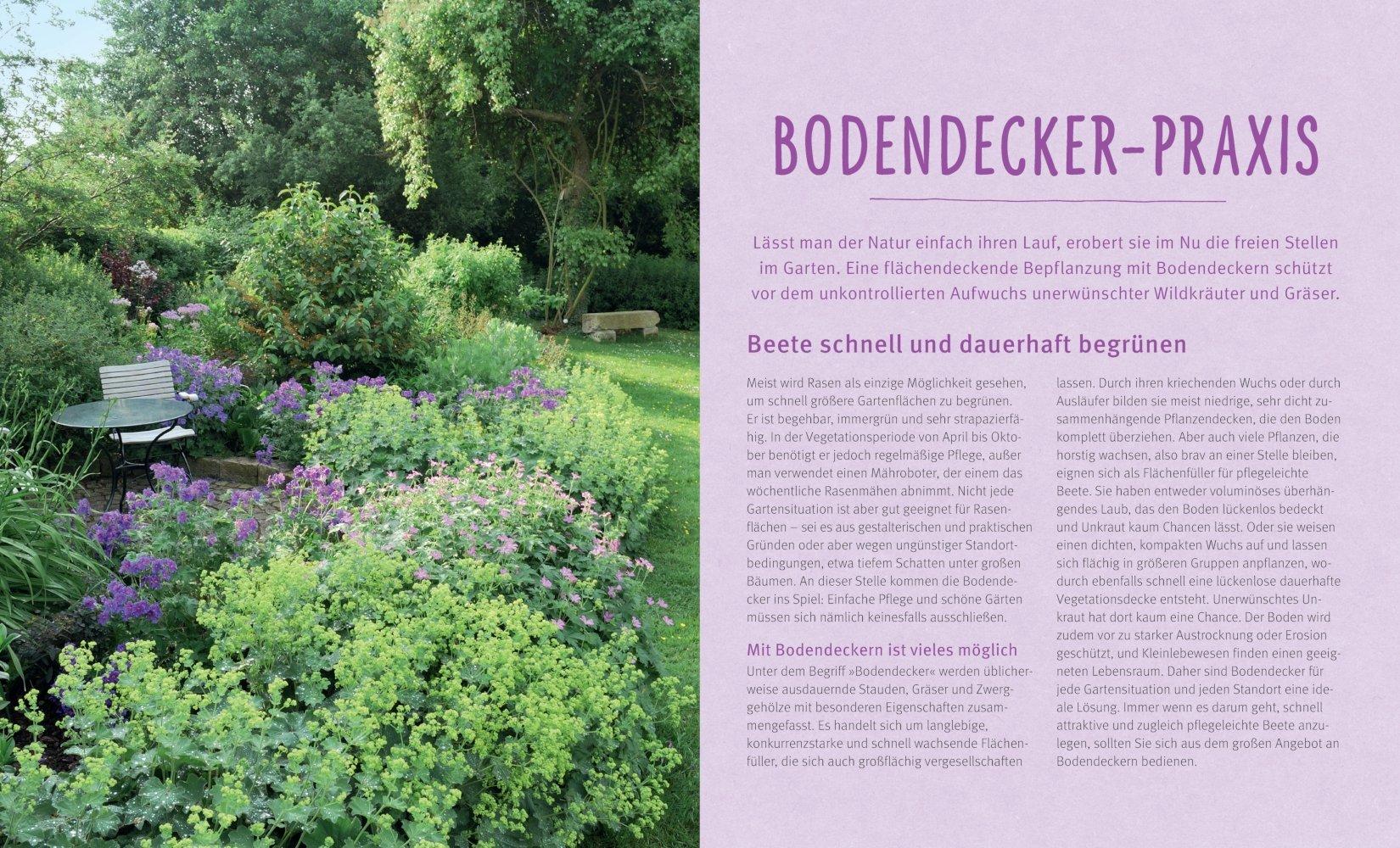 Flinke Bodendecker: Flächenfüller für jeden Gartenstandort GU ...