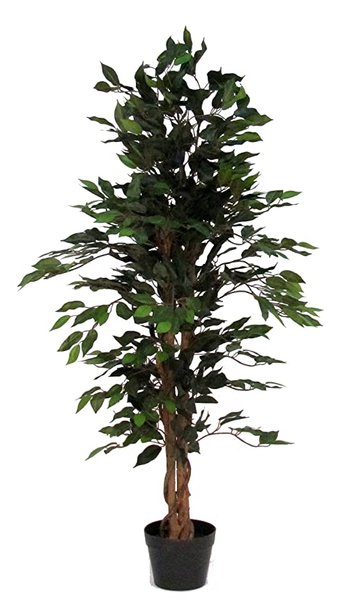Verdevip Ficus Benjamin Verde Albero Artificiale Da Arredo Interno