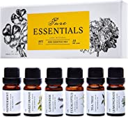 Essential oils by PURE ESSENTIALS 100% Pure Therapeutic Grade Oils kit- Top 6 Aromatherapy Oils Gift Set-6 Pack, 10ML(Eucalyp