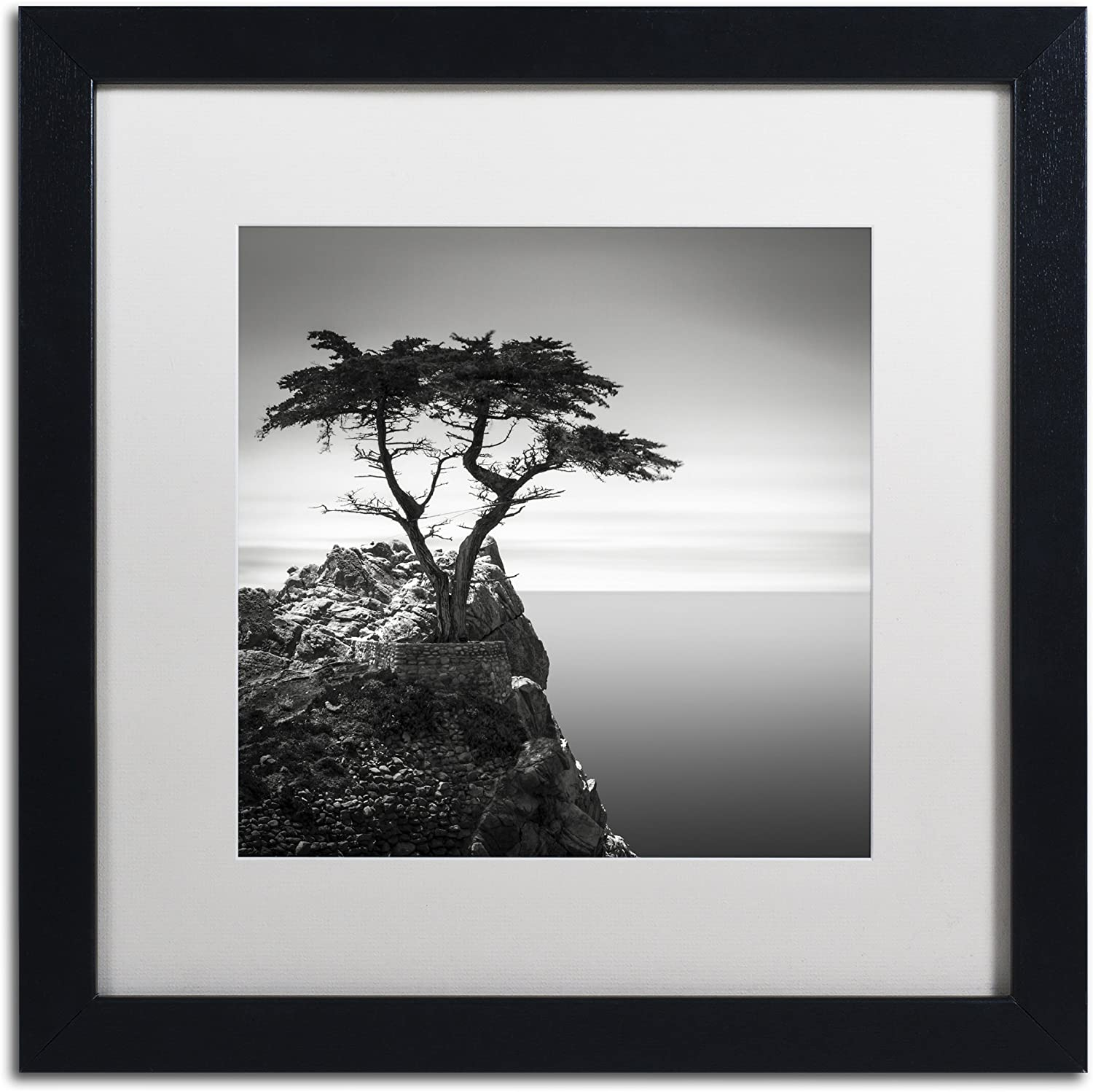 "The Lone Cypress by Dave MacVicar Frame, 16 by 16"", White Matte"