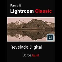 Lightroom Classic PARTE II: Revelado Digital