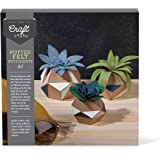 Craft Crush Ann Williams Group Potted Felt Succulents Kit